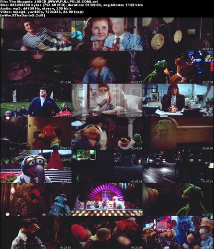 ofs7hev6ndse t Los Muppets  (2011) Español Latino